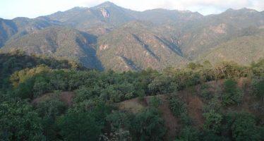 El Parque Nacional El Potosí, protege una gran diversidad biológica