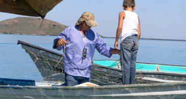 En México, los padres de familia, dentro de la pesca y acuacultura, apoyan con su trabajo la soberanía alimentaria