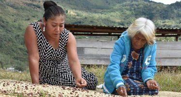 Jaqueline Roque Candelaria, lideresa indígena zapoteca, ganó el concurso de fotografía de FAO, FIMI y Notimia