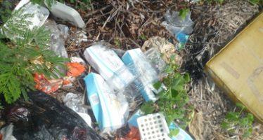 Clausuran predio de 500 m2 con Residuos Peligrosos Biológico-Infecciosos (RPBI) en la reserva de Cuxtal, en Mérida.
