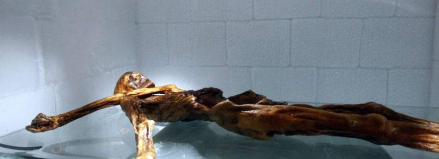 Las últimas horas de Ötzi, la momia de los Alpes
