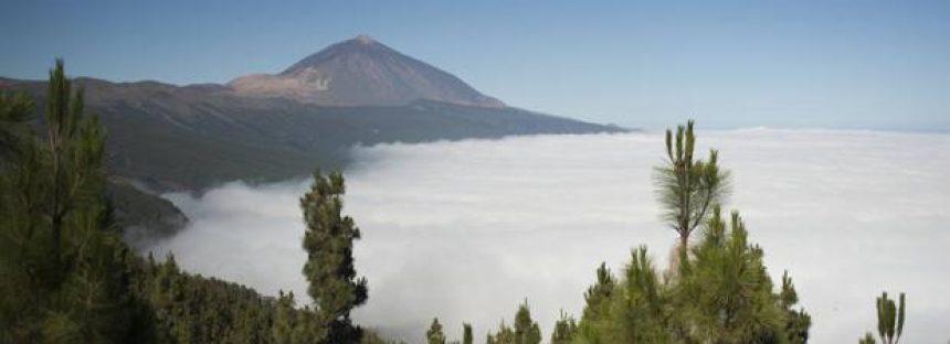 Los incendios forestales son la principal amenaza de los Parques Nacionales