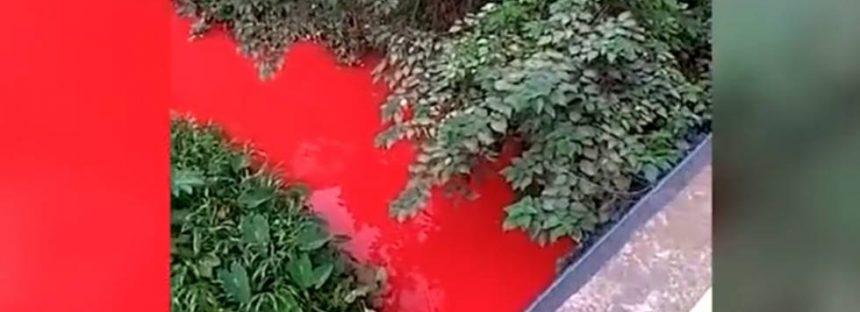 El derrame de una fábrica china tiñe de rojo un río