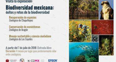 Biodiversidad mexicana: éxitos y retos de la biodiversidad: Exposición fotográfica itinerante en los zoológicos de la CDMX