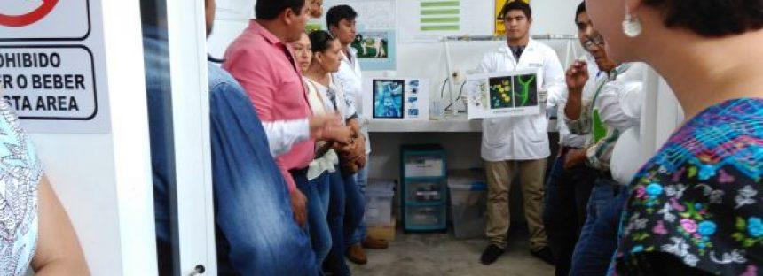 Ecosur Campeche anunció su cartera de proyectos productivos para el sector agroalimentario regional