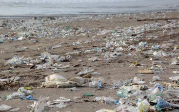 ¿A dónde van los desechos que terminan en las playas y mares?