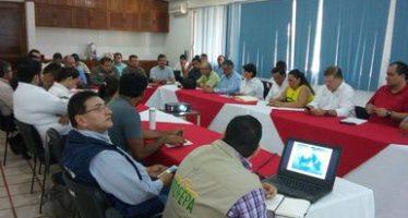 Investigan expertos muerte de 22 manatíes salvajes del Caribe (Trichechus manatus) en Tabasco