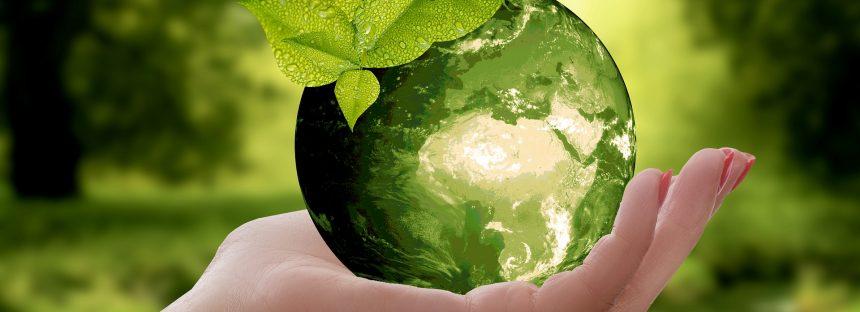 Diferencia entre sustentable y sostenible