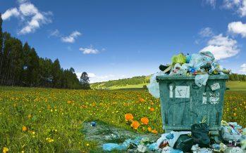 5 tips para reducir la plaga moderna… los plásticos