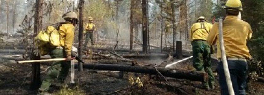 105 combatientes mexicanos apoyarán en supresión de incendios forestales en Canadá