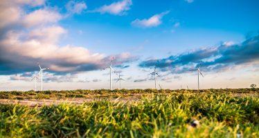 Energías renovables, gran oportunidad para México