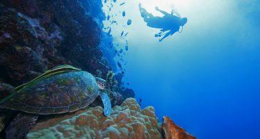 Aguas marinas más cálidas suben nivel de los océanos y contienen menos oxígeno