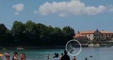 Dos delfines sorprenden a los bañistas en una playa gallega