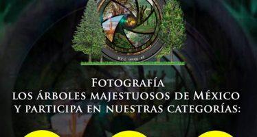 Concurso Visión Forestal y Centinelas del Tiempo 2018