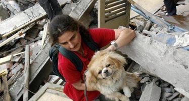 Simulacro de evacuación de sismo con animales de compañía