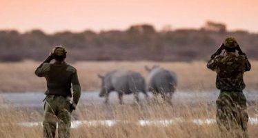 Guardaparque, un oficio peligroso a pesar de los avances tecnológicos