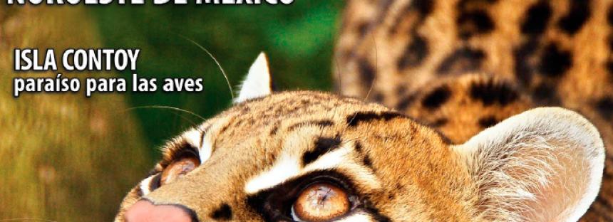 Especies, revista sobre conservación y biodiversidad