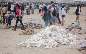 Greenpeace limpia playa Miramar en Tamaulipas