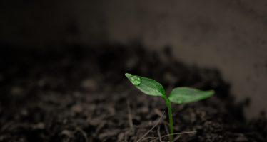 Plantas de tratamiento de aguas residuales: una fuente sorprendente de microplásticos