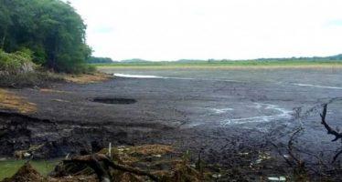 Laguna en Quintana Roo desaparece en menos de 24 horas
