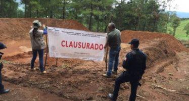 Clausuran dos predios forestales de más de 18 Hectáreas por cambio de uso de suelo