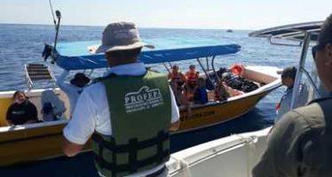 Realizan recorridos de vigilancia en la zona de avistamiento de tiburón ballena