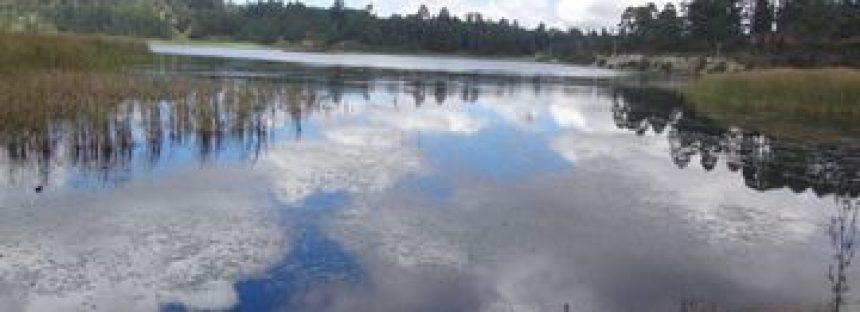 Parque Nacional Bosencheve, limpias veredas y paisajes inexplorados