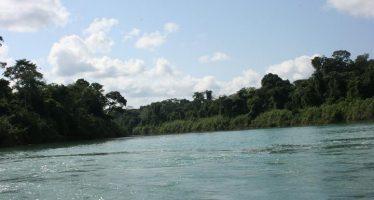 Rechaza SEMARNAT presa hidroeléctrica Santo Domingo, en la Selva Lacandona de Chiapas