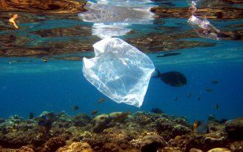 Kenia y su lucha contra las bolsas de plástico