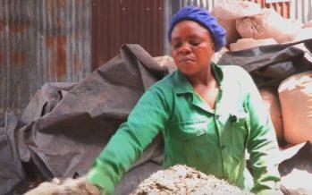 El plástico tiene muchas vidas en Nairobi