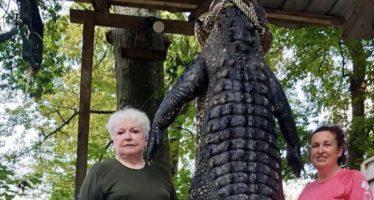 La alcaldesa que mató a un caimán de tres metros y medio de un tiro