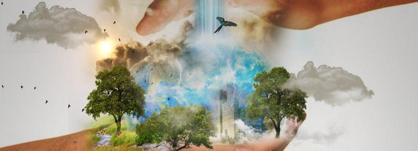 Los derechos ambientales bajo reflectores en Brasil