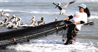 Pesca responsable, compromiso de 190 países en la Declaración de Cancún