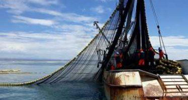 Barco sardinero es asegurado por realizar pesca comercial en Reserva de la Biósfera El Vizcaíno