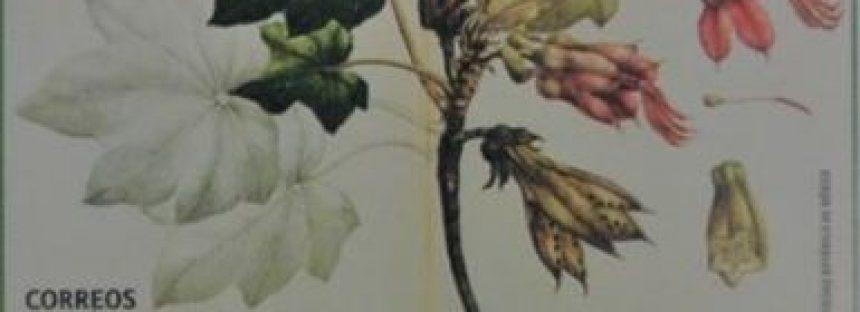 Cancelación de estampilla postal Flora de México 2018