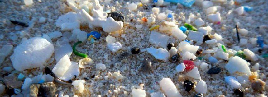 Los microplásticos ya han llegado al intestino humano