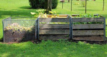 Composta casera: mejora plantas y suelos a costos económicos con materiales accesibles
