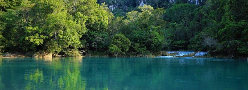 Conservación a perpetuidad de la Selva Lacandona