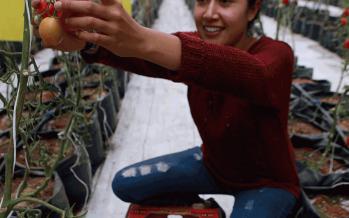 La explotación de las mujeres deriva de la marginación donde la conexión mujeres-ambiente carece de base biológica: Miriam Alfie