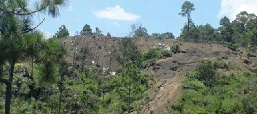 Clausuran actividades de cambio de uso de suelo en 38 hectáreas destinadas a la siembra de aguacate