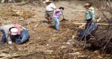 Limpieza de más de cinco toneladas de basura en playa de Casitas