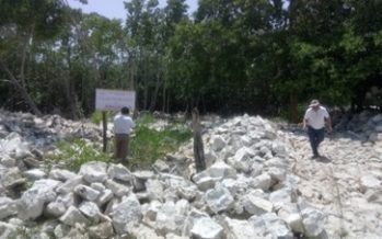 Clausuran más de 1,345 hectáreas en zona de humedales
