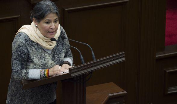 La contaminación y muerte por pesticidas en Michoacán es un grave problema de salud: diputada Mayela Salas