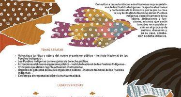 Foros de consulta sobre la ley que crea el Instituto Nacional de los Pueblos Indígenas