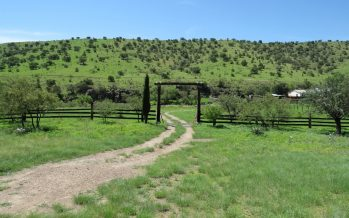 Áreas naturales son destinadas voluntariamente para su conservación