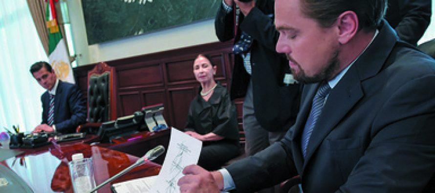 ¡El miedo no anda en burro! La SEMARNAT reconoce a Fundación Leonardo DiCaprio compromiso para salvar a la vaquita marina