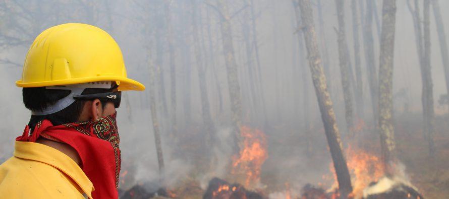 México cuadruplicó el número de combatientes forestales