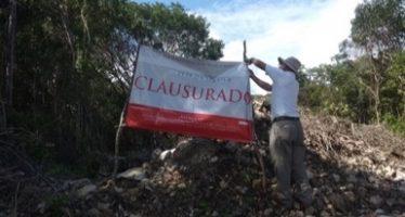 Clausuran predio por cambio de uso de suelo en terrenos forestales sin autorización