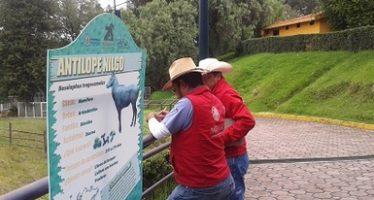 Solicitud de ingreso al programa nacional de auditoría ambiental (PNAA) del zoológico del altiplano; busca conmutar sanción