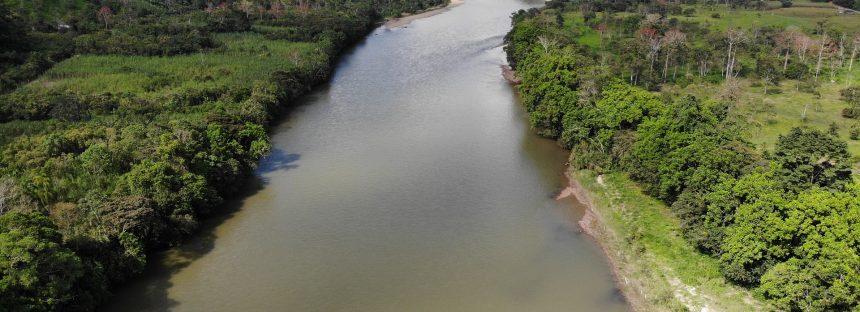 Conservación ambiental es desarrollo económico